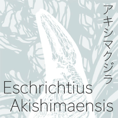 アキシマクジラ イメージロゴ